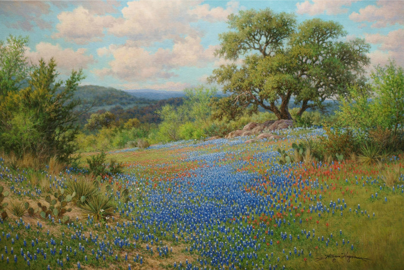 Giclee print on canvas from a Texas bluebonnet oil painting by William Hagerman