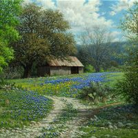 bluebonnet oil painting with barn by William Hagerman